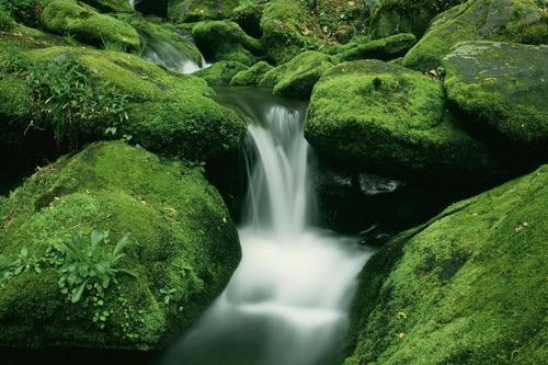 461 100+ fondos de pantalla de paisajes naturales