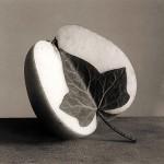 fotos-blanco-y-negro-2
