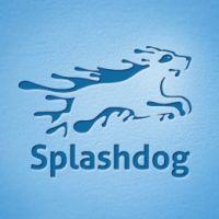 diseños logos perros splashdog