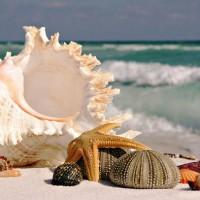 Amazing-Beaches-and-Islands-16