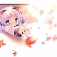 anime_wallpaper_reach-992x744