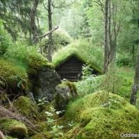 hobbit-house-01