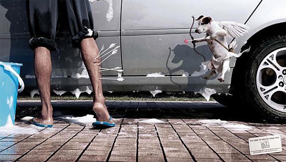 publicidad graciosa con perros 11