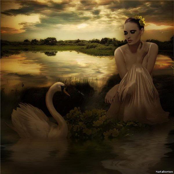 foto manipulada surreal mujer y cisne
