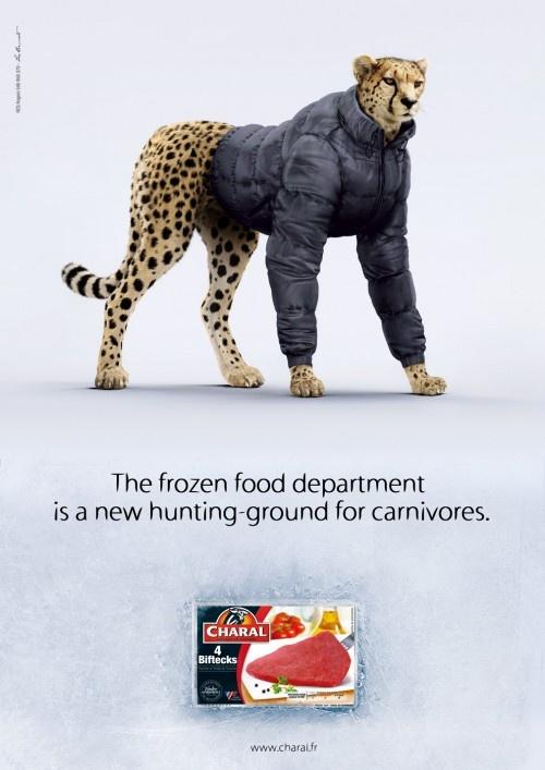 publicidad creativas charal