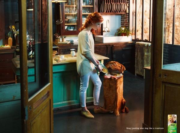 publicidad purina dog chow