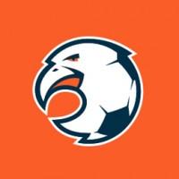 logos futbol orliki