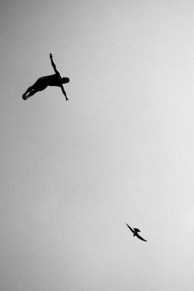 Categoría: Wings, Por: Samo Vidic