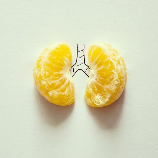 fotos conceptuales pulmones