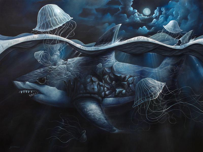 Graham Curran tiburon y medusas
