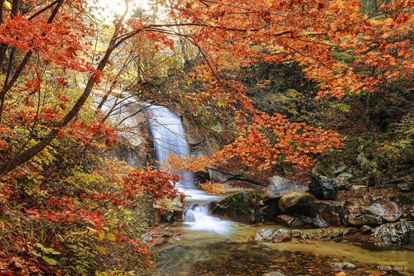 cascada de otoño waterfall-in-Autumn-2-by-Tiger-Seo