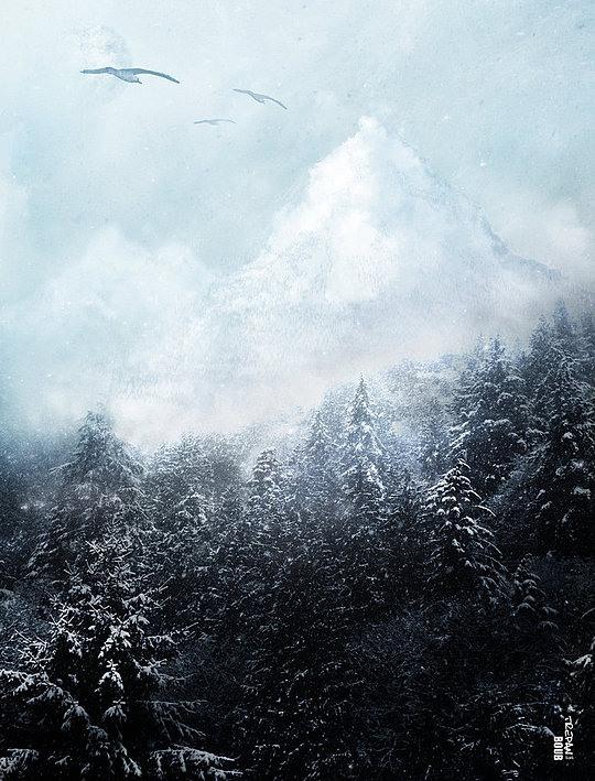 fotos manipuladas gaviotas y nieve