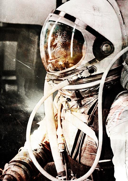 fotos manipuladas mono astronauta