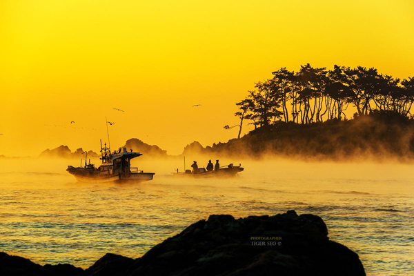 neblina del mar sea-fog-by-Tiger-Seo