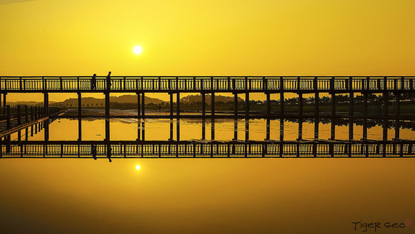 puente go-with-by-Tiger-Seo