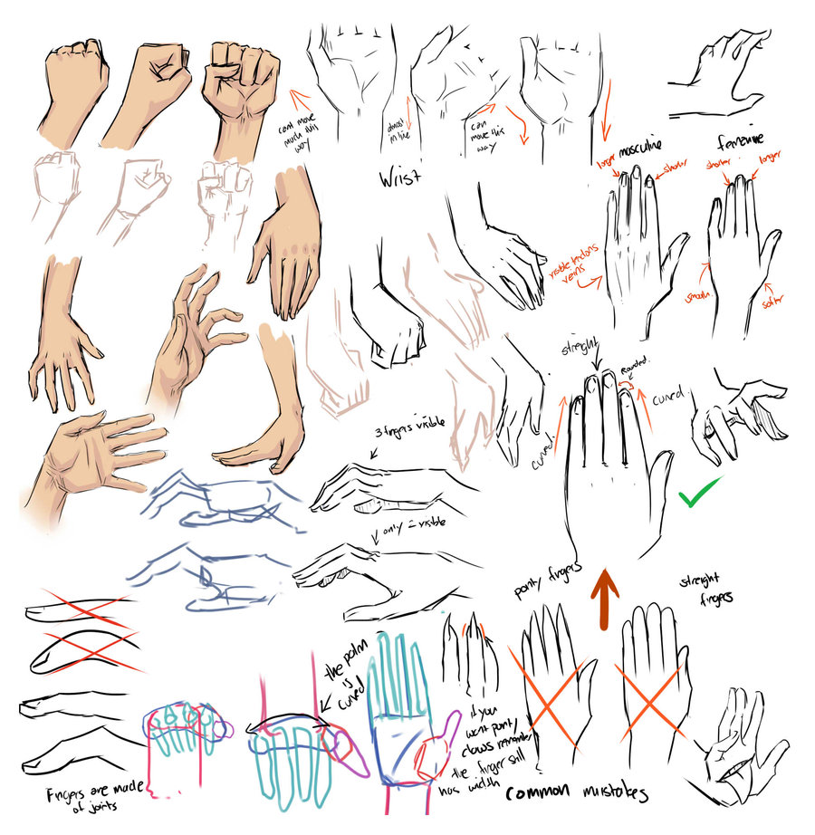_drawing_hands_and_tips__by_moni158-d30iuq8