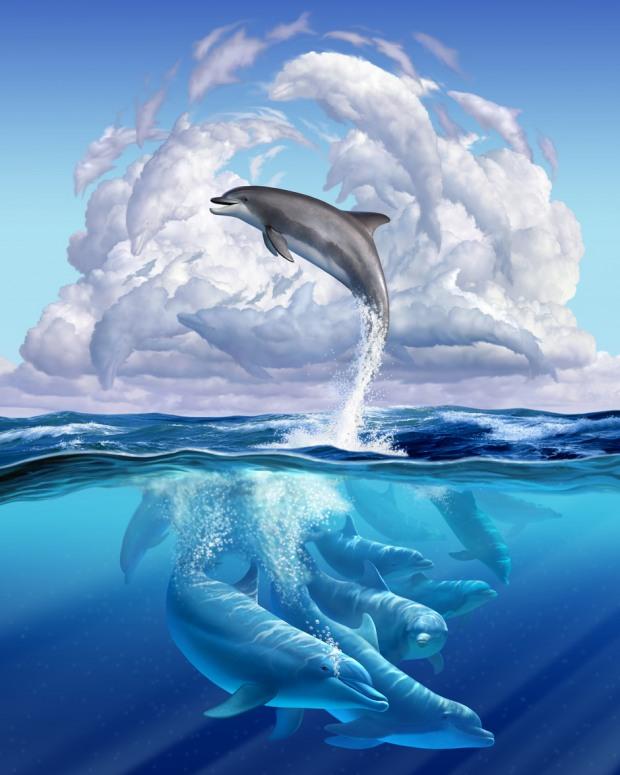 ilustraciones de animales delfines