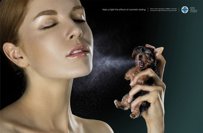 carteles en contra del maltrato de animales 10