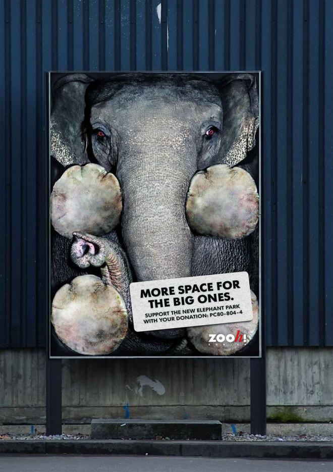 carteles en contra del maltrato de animales 12