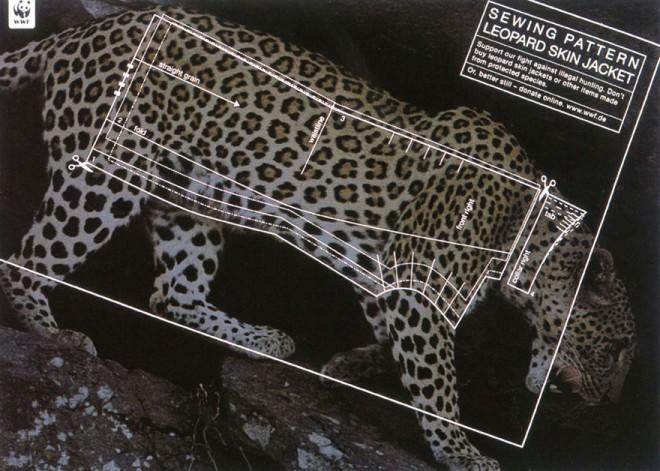 carteles en contra del maltrato de animales 16
