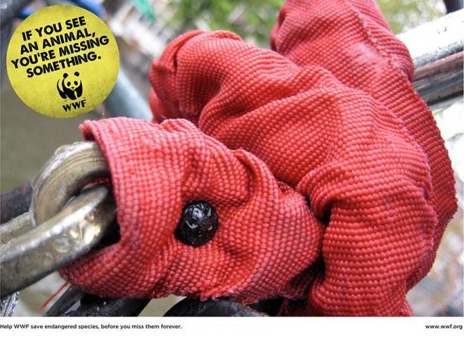 carteles en contra del maltrato de animales 20