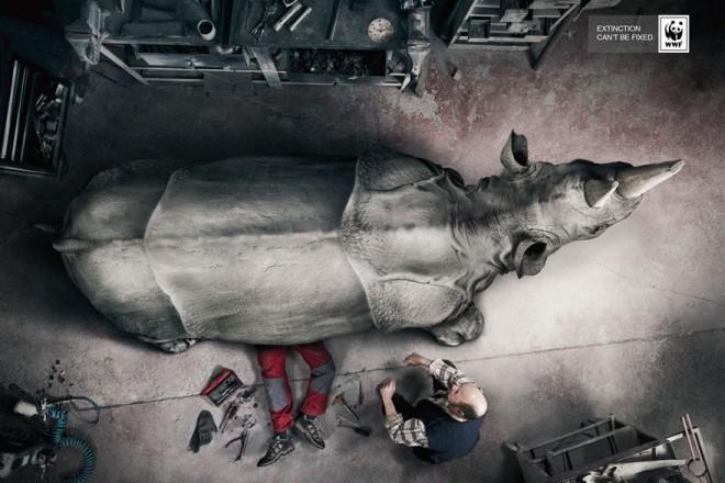 carteles en contra del maltrato de animales 26