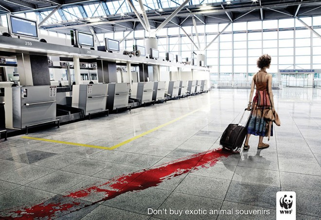 carteles en contra del maltrato de animales 27