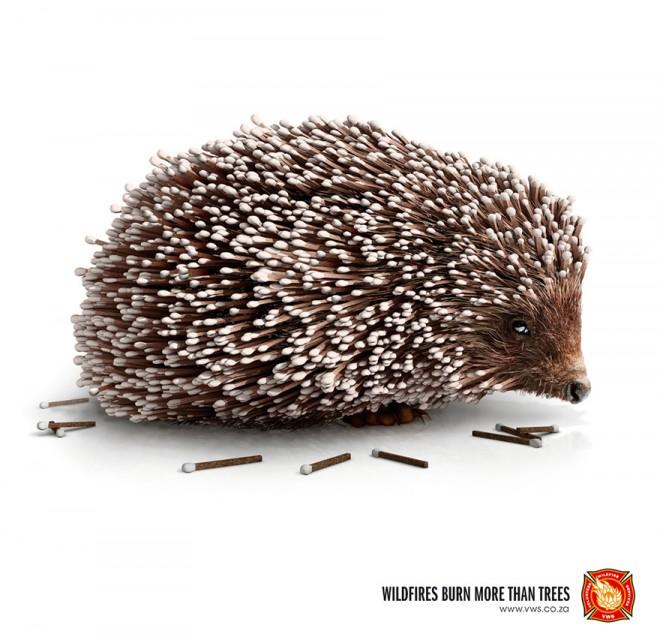 carteles en contra del maltrato de animales 36