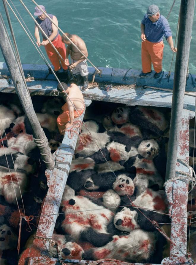 carteles en contra del maltrato de animales 37