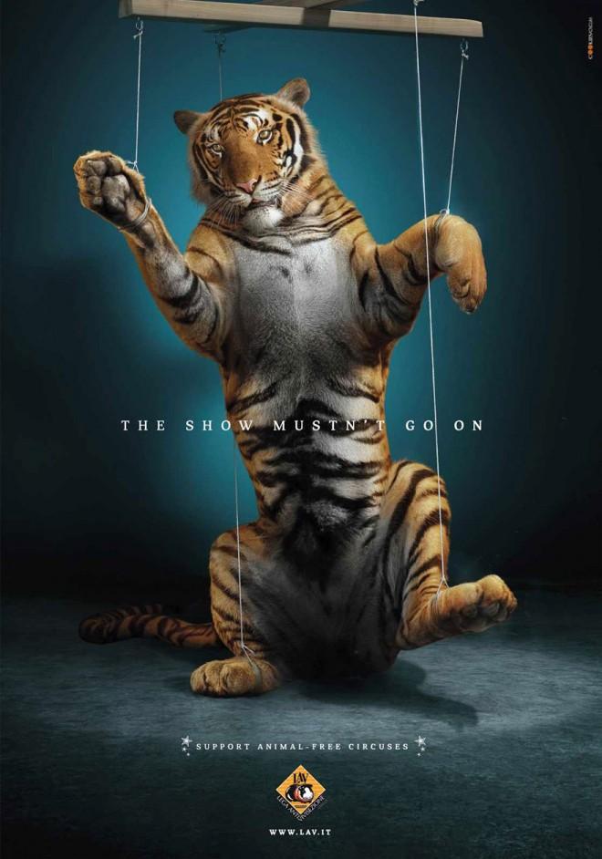 carteles en contra del maltrato de animales 38