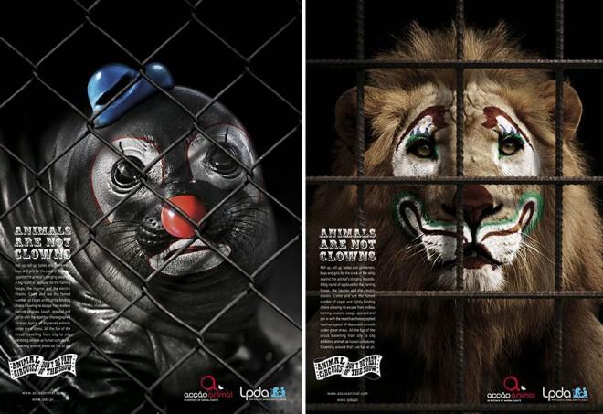 carteles en contra del maltrato de animales 5
