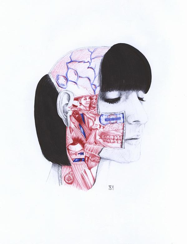extrañas ilustraciones anatomia 1
