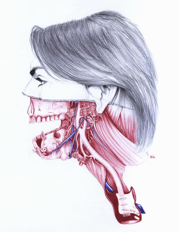 extrañas ilustraciones anatomia 3