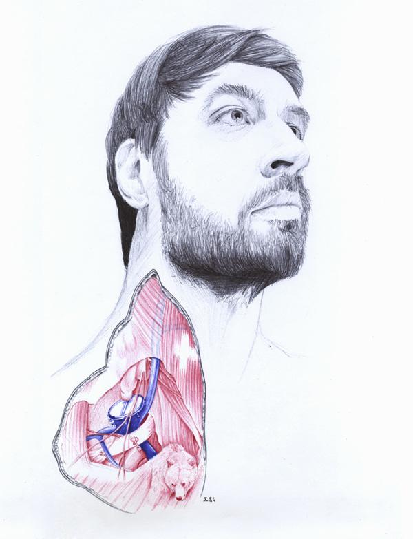extrañas ilustraciones anatomia 7