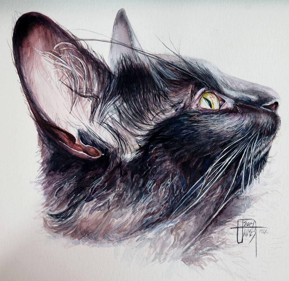 Paulina Jaimes pintura gato