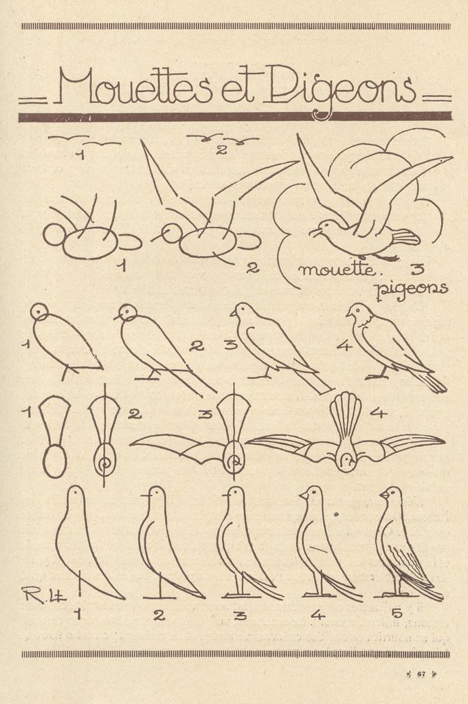 Como dibujar pajaros