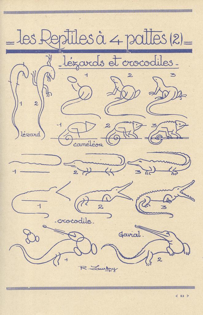 Como dibujar reptiles