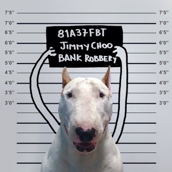 Bull Terrier ilustraciones 5