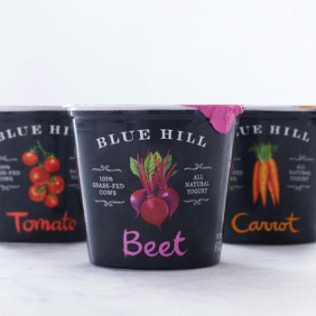 branding Blue Hill Yogurt imagen 1
