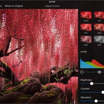 Pixelmator para iPad 7