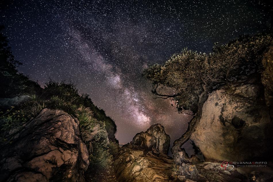 Giovanna Griffo fotos cielo nocturno 4