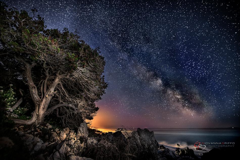 Giovanna Griffo fotos cielo nocturno 5