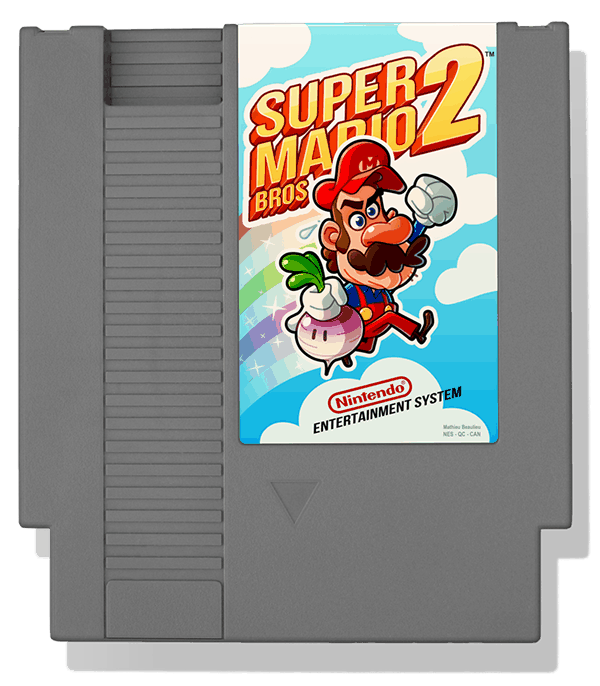 Mathieu Beaulieus super mario bros 2a