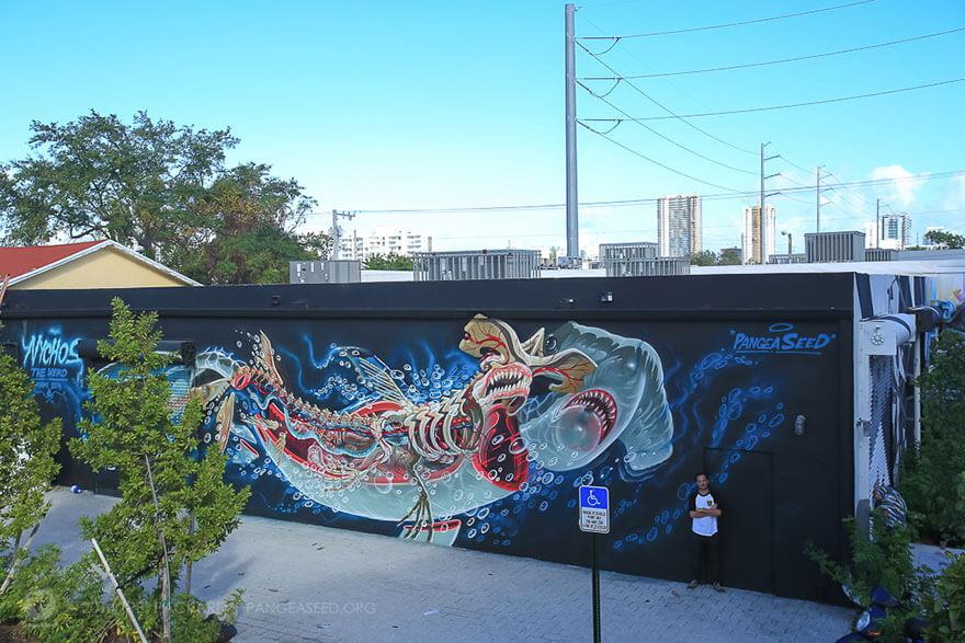 street art anatomia caricaturas img 5