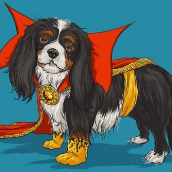 perros superheroes josh lynch img 10