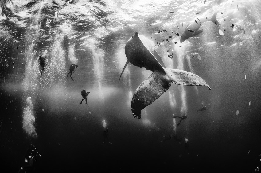 © Anuar Patjane / National Geographic Traveler Photo Contest