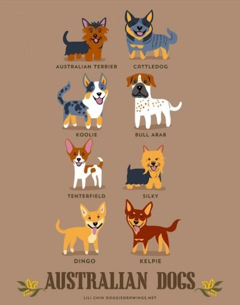 doggiedrawings1