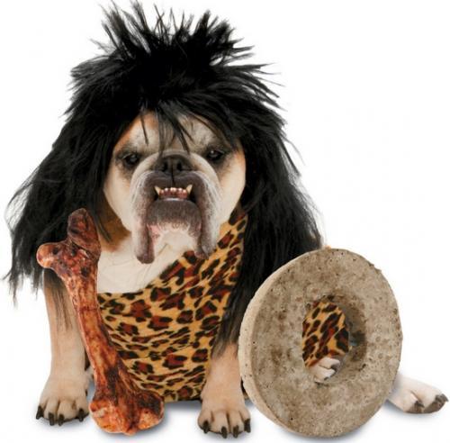 perro cavernicola