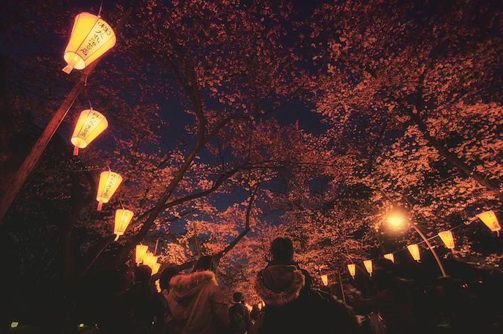 Fotografias vida noctura Tokio 11