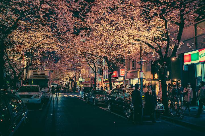Fotografias vida noctura Tokio 12